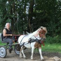 men en ruiterdag 3 foto Clemens Brughuis (69)